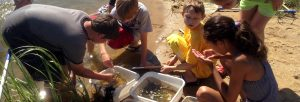 Jr.Tech Estuary and Coastal Science STEM Workshop