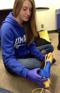 Jr.Tech Girls STEM Summit Veterinarian Science Career Track help