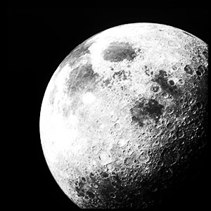 moon camp testimonials