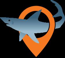 Jr.Tech Shark Tracking STEM Workshop